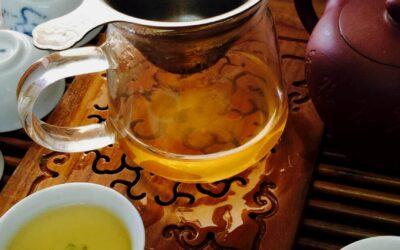 Le thé Oolong de Bao Loc au centre du Vietnam