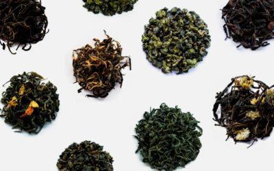 Une seule et unique plante pour une infinité d'expériences gustatives différentes : Le Thé