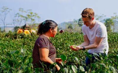Les valeurs qui nous animent chez Thé du Vietnam