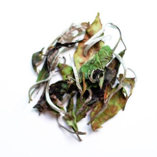 White tea Shan Tuyết PAI MU TAN - Thé du Vietnam