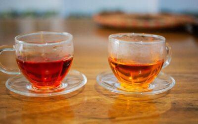 4 thés vietnamiens que vous devez goûter au moins une fois dans votre vie.