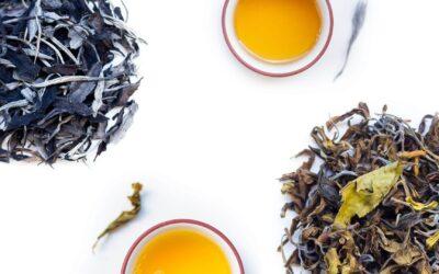 La semaine du thé blanc ! Découvrez nos 2 nouveaux Pai Mu Tan sauvages cueillette 2021 !